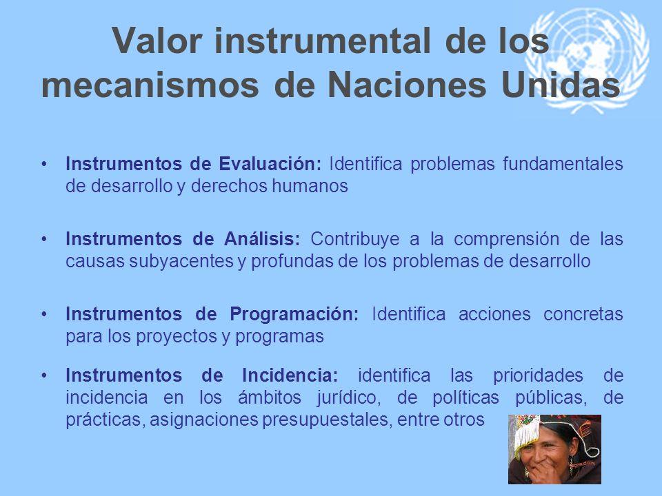 Valor instrumental de los mecanismos de Naciones Unidas