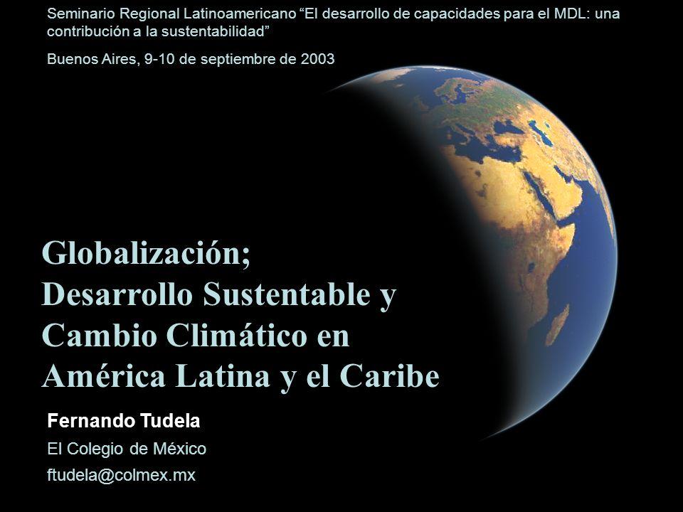 Seminario Regional Latinoamericano El desarrollo de capacidades para el MDL: una contribución a la sustentabilidad