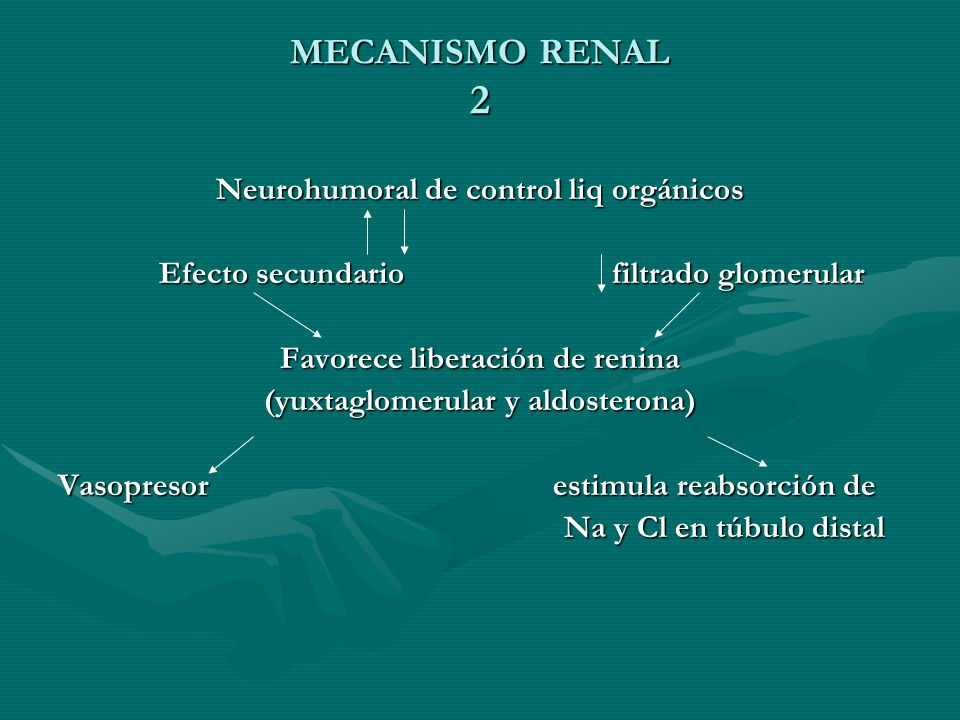 MECANISMO RENAL 2 Neurohumoral de control liq orgánicos