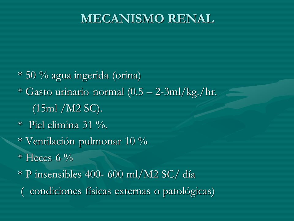 MECANISMO RENAL * 50 % agua ingerida (orina)