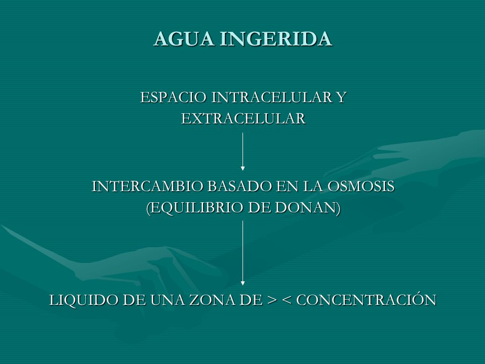 AGUA INGERIDA ESPACIO INTRACELULAR Y EXTRACELULAR