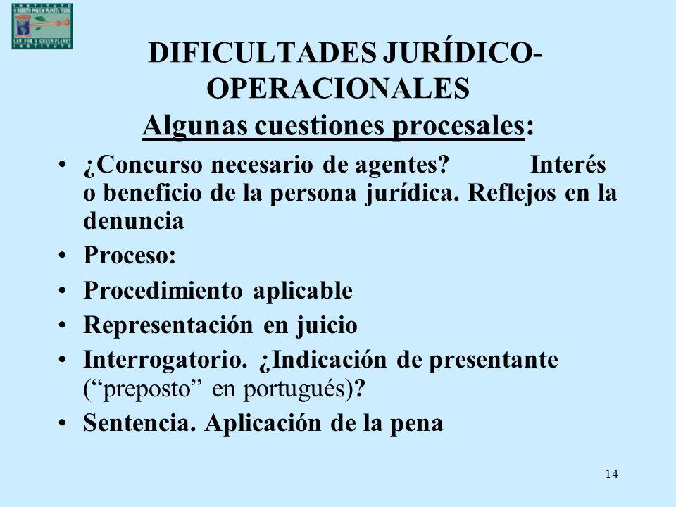 DIFICULTADES JURÍDICO-OPERACIONALES Algunas cuestiones procesales: