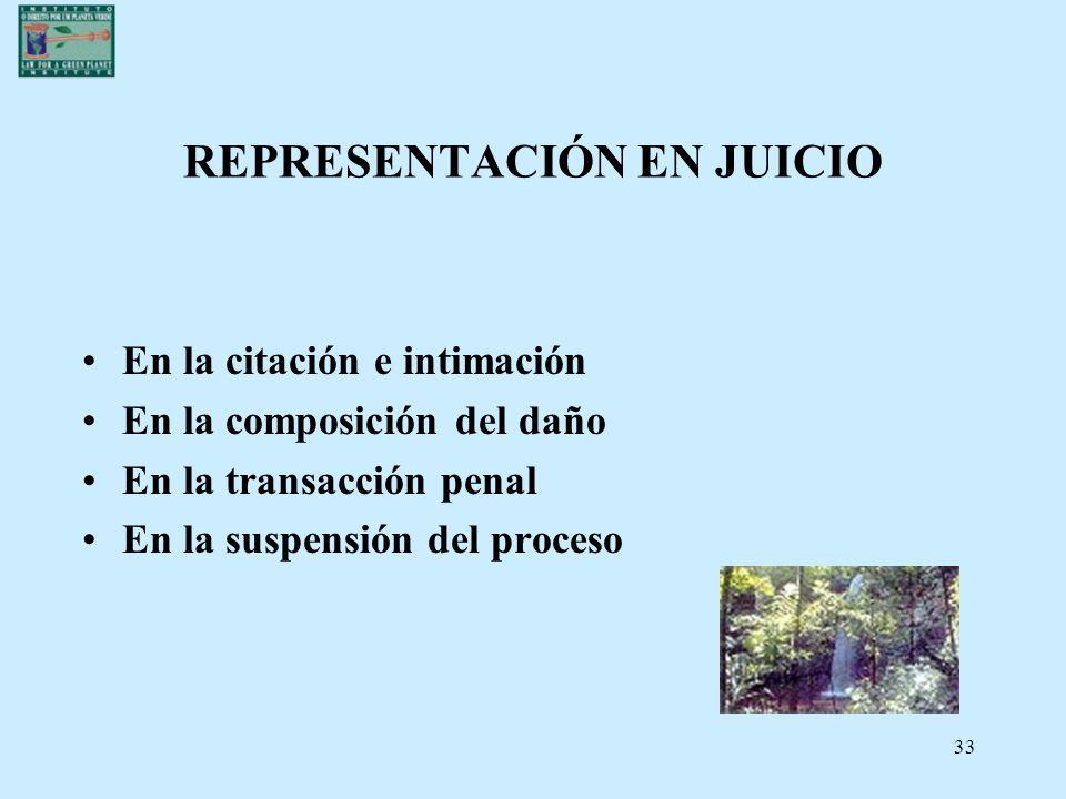 REPRESENTACIÓN EN JUICIO