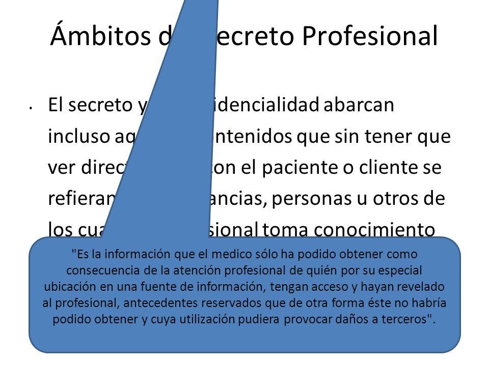 Ámbitos del Secreto Profesional