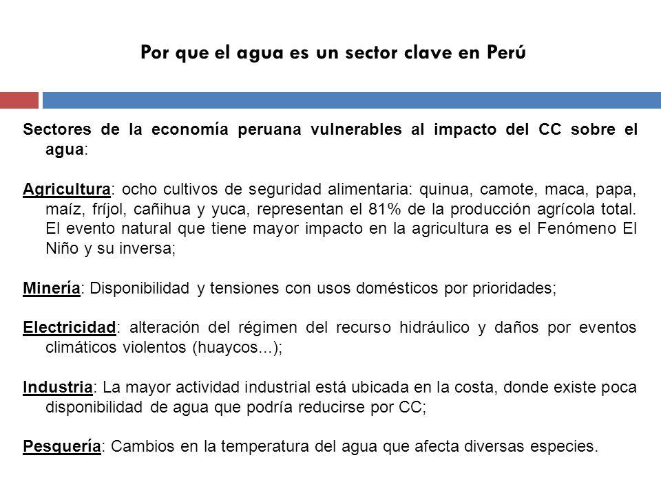 Por que el agua es un sector clave en Perú