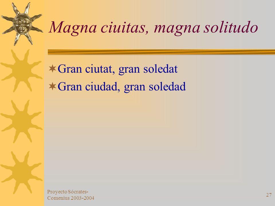 Magna ciuitas, magna solitudo