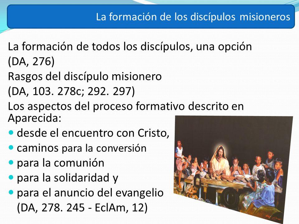 La formación de todos los discípulos, una opción (DA, 276)