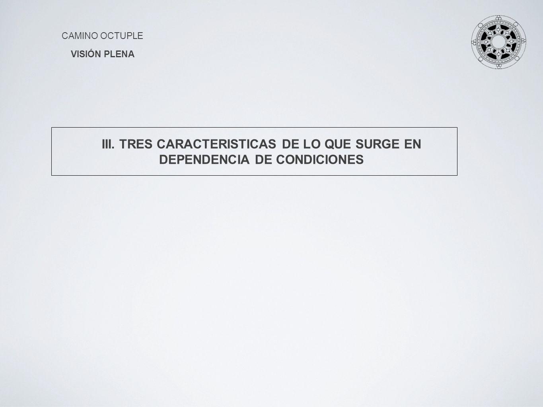 CAMINO OCTUPLE VISIÓN PLENA III. TRES CARACTERISTICAS DE LO QUE SURGE EN DEPENDENCIA DE CONDICIONES