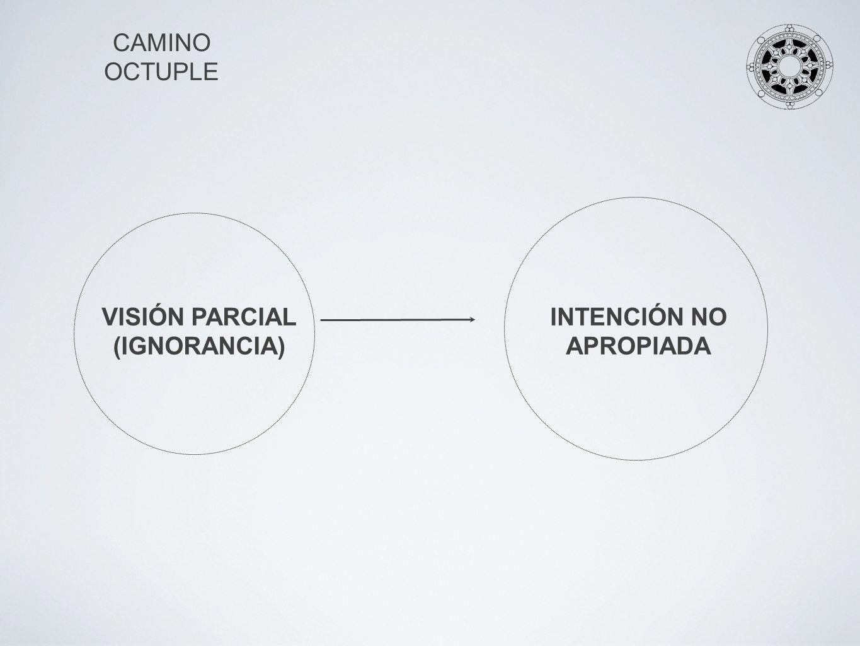 VISIÓN PARCIAL (IGNORANCIA) INTENCIÓN NO APROPIADA