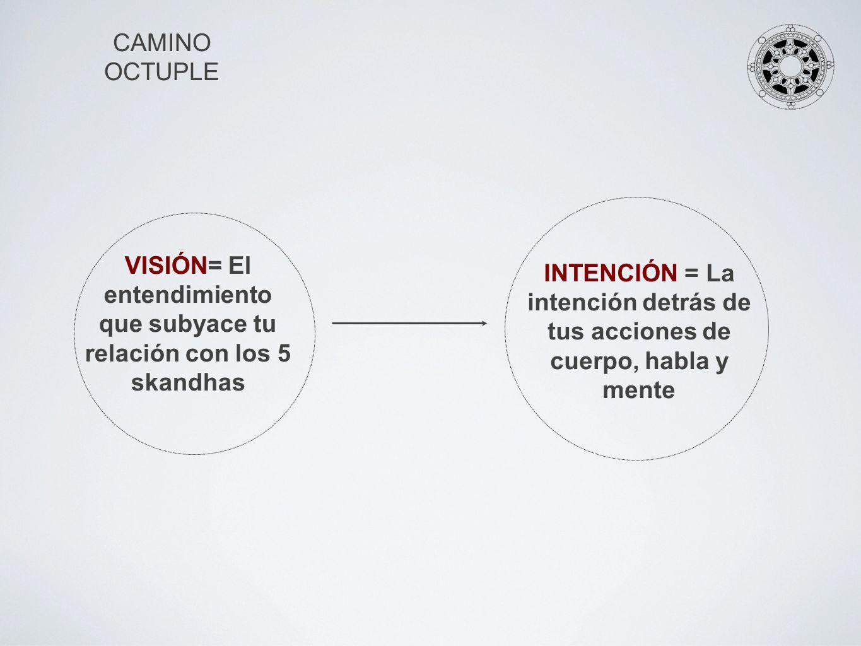 VISIÓN= El entendimiento que subyace tu relación con los 5 skandhas