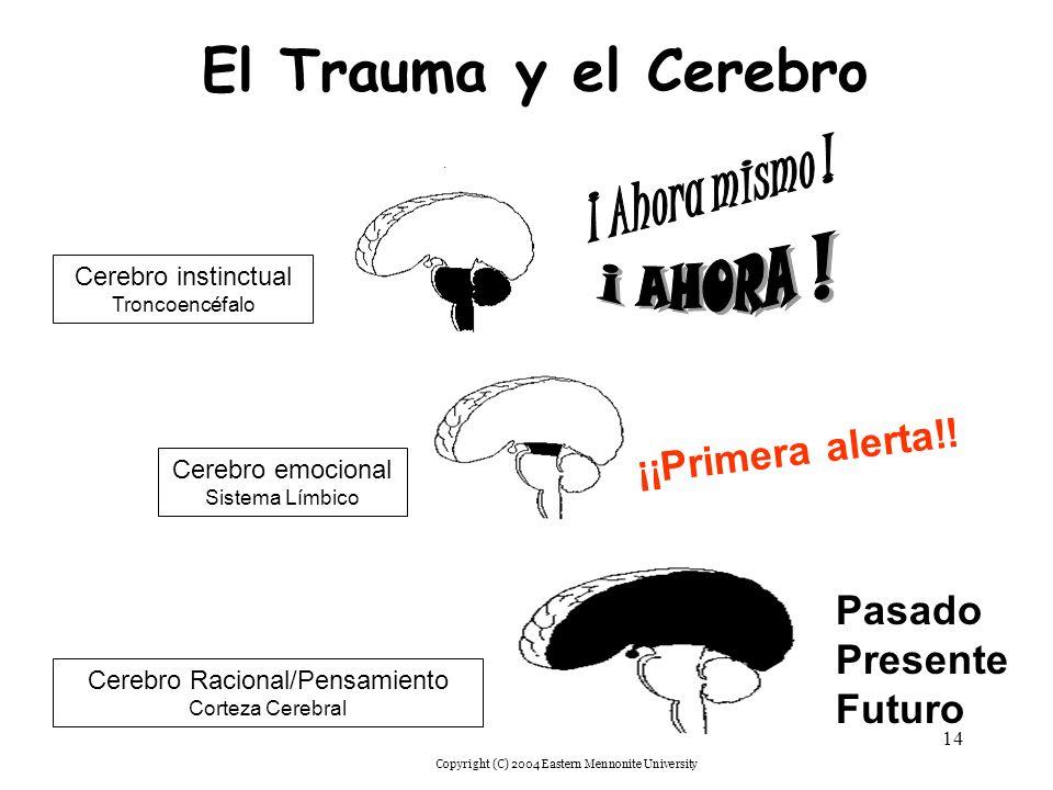 El Trauma y el Cerebro ¡ Ahora mismo ! ¡ AHORA ! ¡¡Primera alerta!!