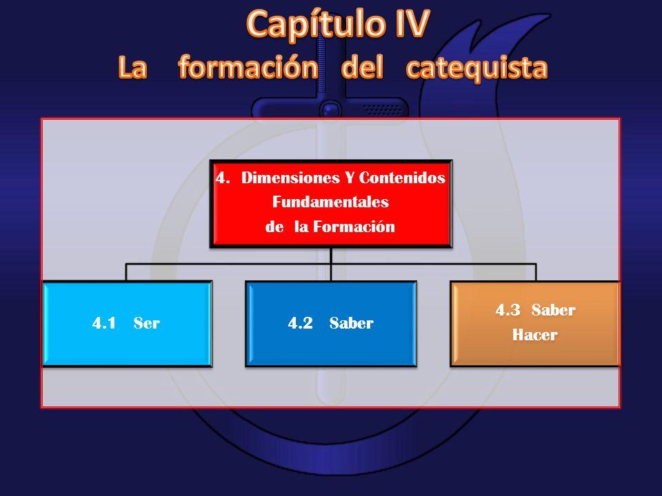 4. Dimensiones Y Contenidos