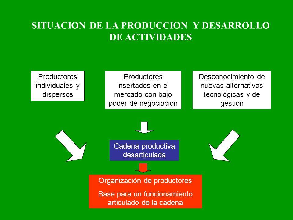 SITUACION DE LA PRODUCCION Y DESARROLLO DE ACTIVIDADES