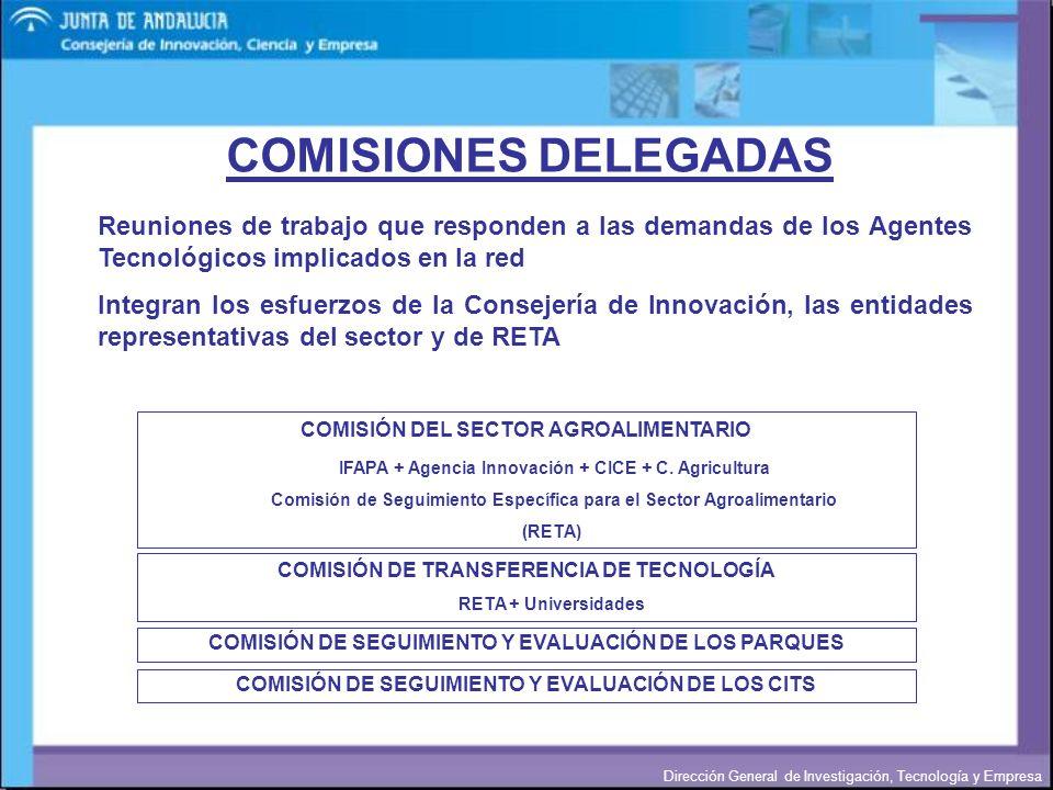 COMISIONES DELEGADAS Reuniones de trabajo que responden a las demandas de los Agentes Tecnológicos implicados en la red.