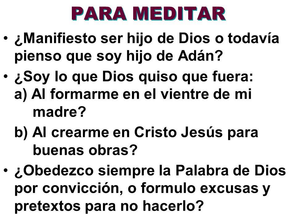 PARA MEDITAR ¿Manifiesto ser hijo de Dios o todavía pienso que soy hijo de Adán