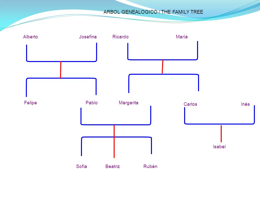 ARBOL GENEALOGICO / THE FAMILY TREE