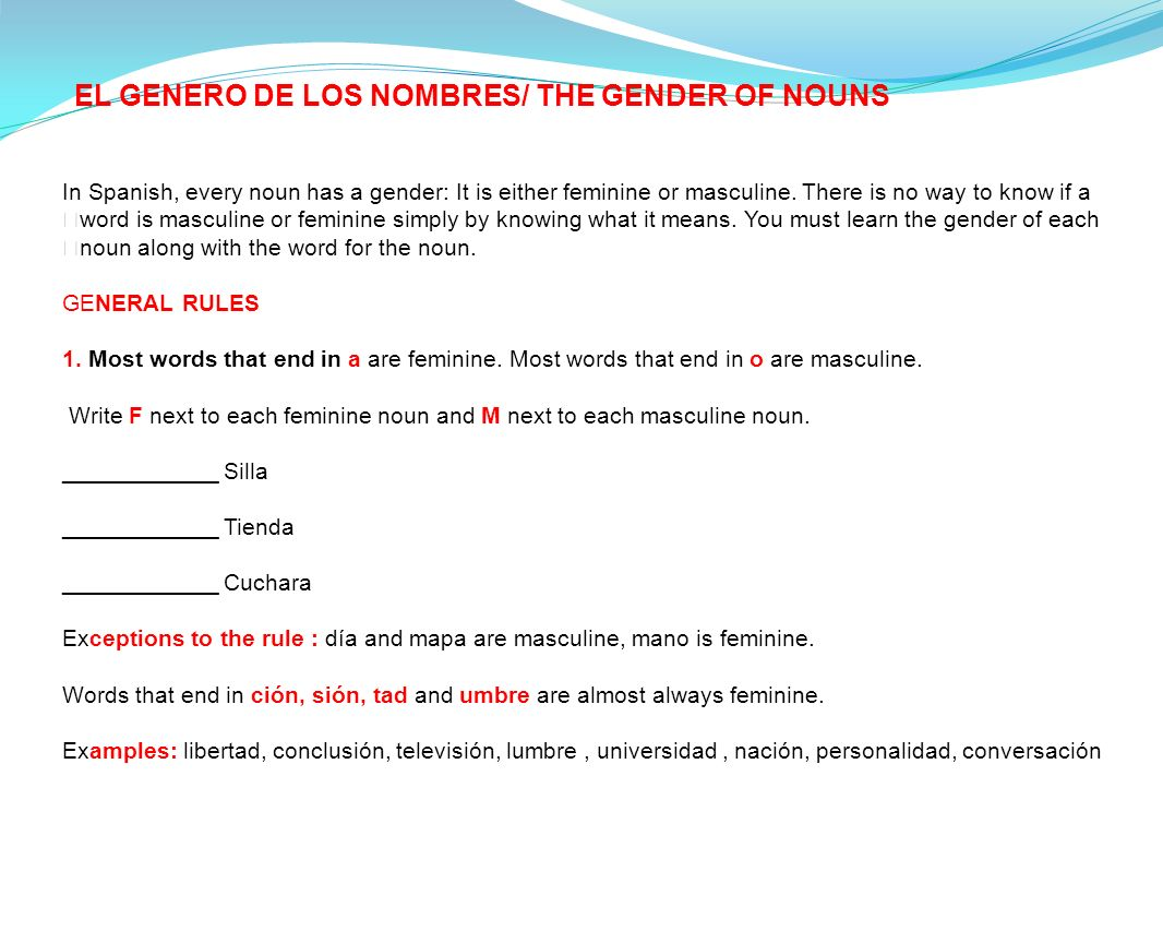 EL GENERO DE LOS NOMBRES/ THE GENDER OF NOUNS