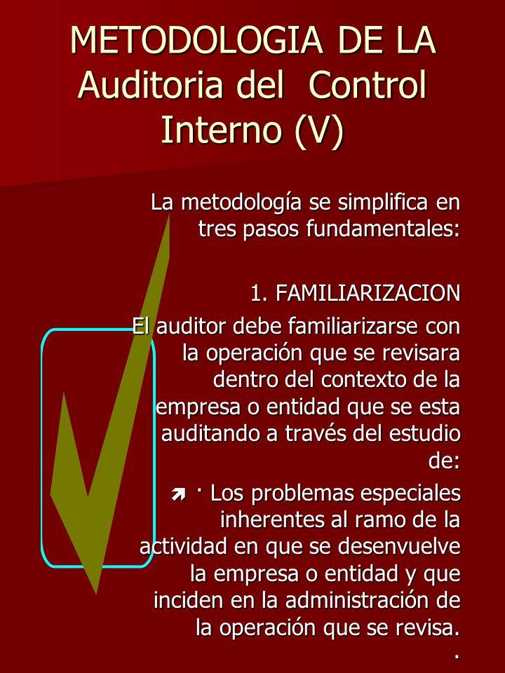 METODOLOGIA DE LA Auditoria del Control Interno (V)