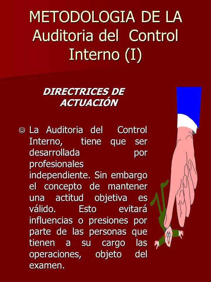 METODOLOGIA DE LA Auditoria del Control Interno (I)