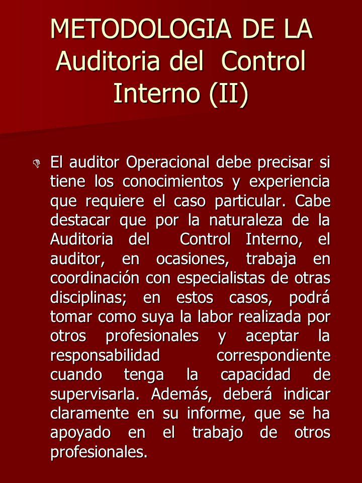 METODOLOGIA DE LA Auditoria del Control Interno (II)