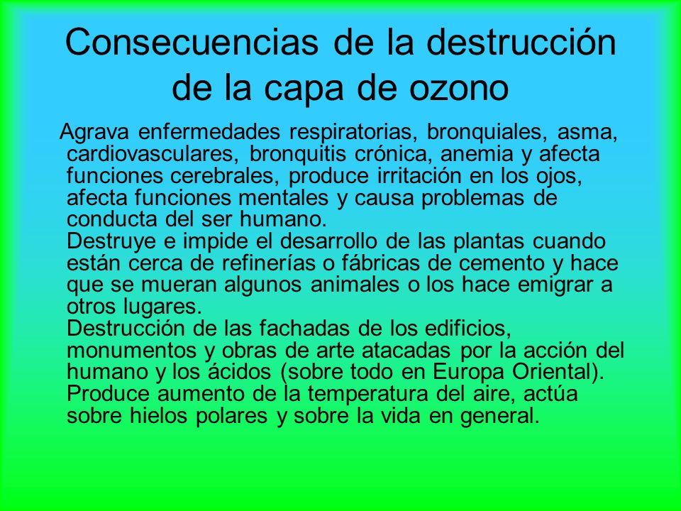 Consecuencias de la destrucción de la capa de ozono