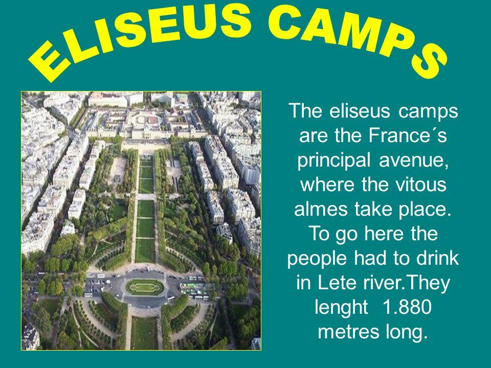 ELISEUS CAMPS