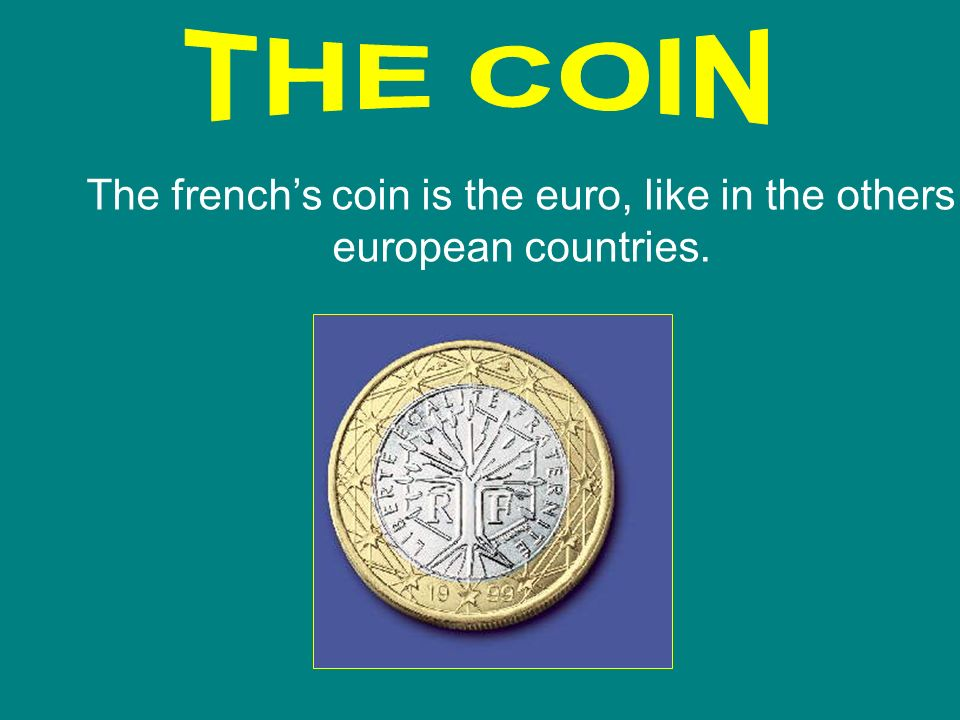 The french's coin is the euro, like in the others european countries.
