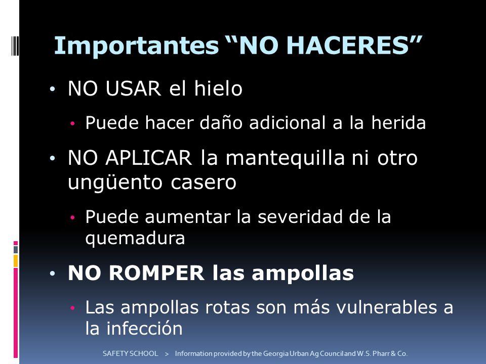 Importantes NO HACERES