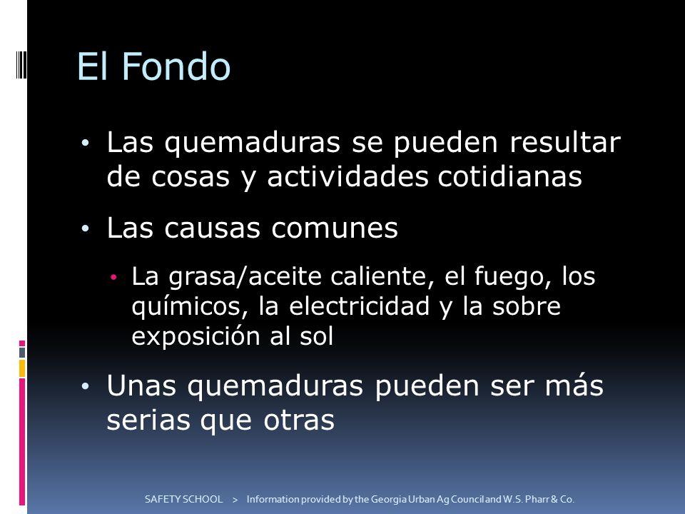 El Fondo Las quemaduras se pueden resultar de cosas y actividades cotidianas. Las causas comunes.