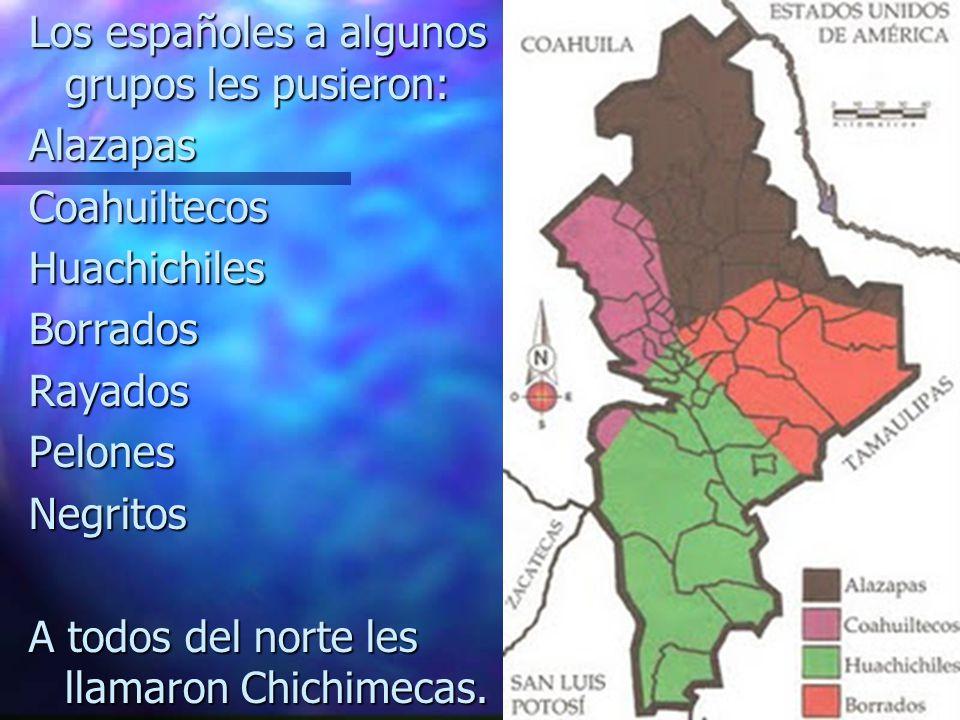 Los españoles a algunos grupos les pusieron: Alazapas Coahuiltecos Huachichiles Borrados Rayados Pelones Negritos A todos del norte les llamaron Chichimecas.