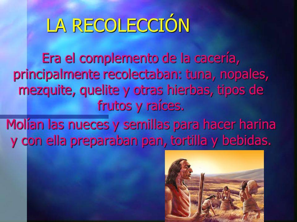 LA RECOLECCIÓN