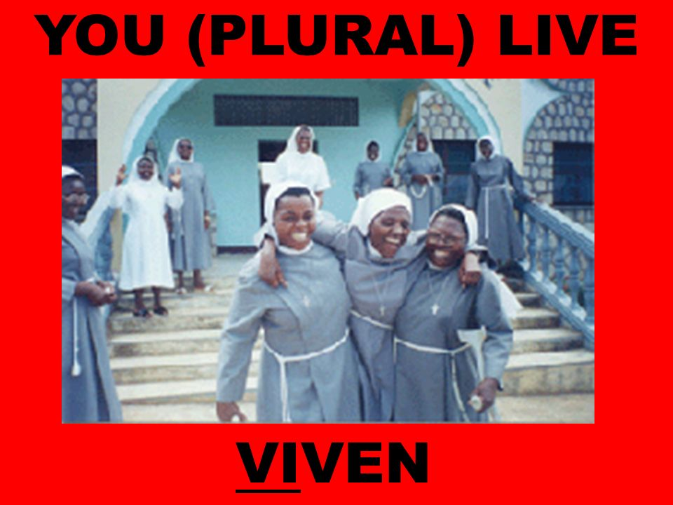 YOU (PLURAL) LIVE VIVEN