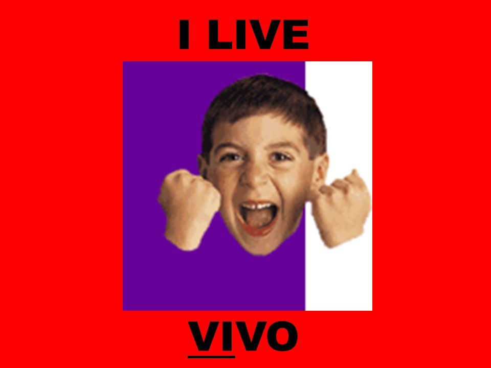 I LIVE VIVO