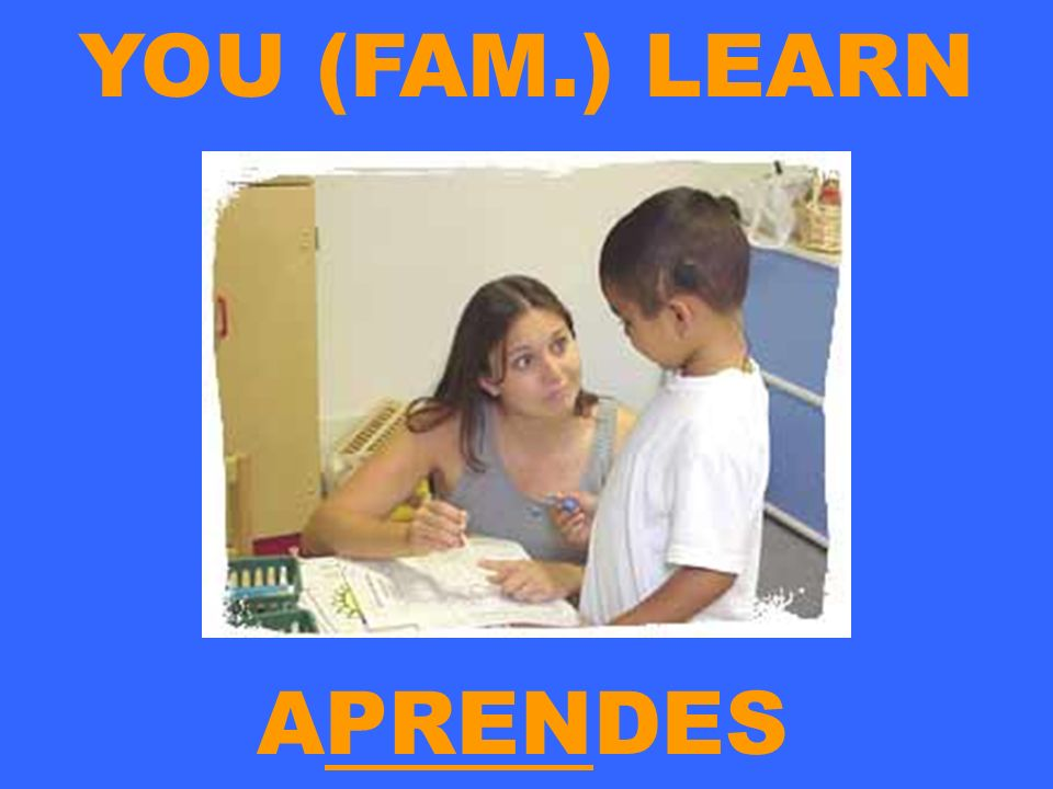 YOU (FAM.) LEARN APRENDES