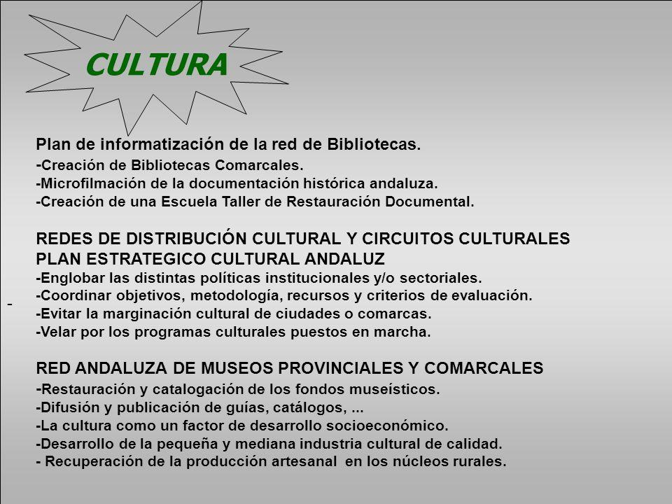 CULTURA Plan de informatización de la red de Bibliotecas.