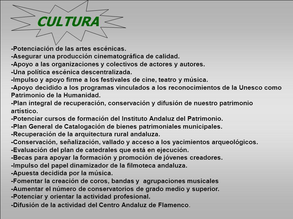 CULTURA -Potenciación de las artes escénicas.