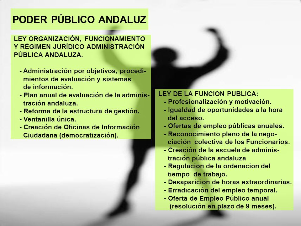 PODER PÚBLICO ANDALUZ LEY ORGANIZACIÓN, FUNCIONAMIENTO