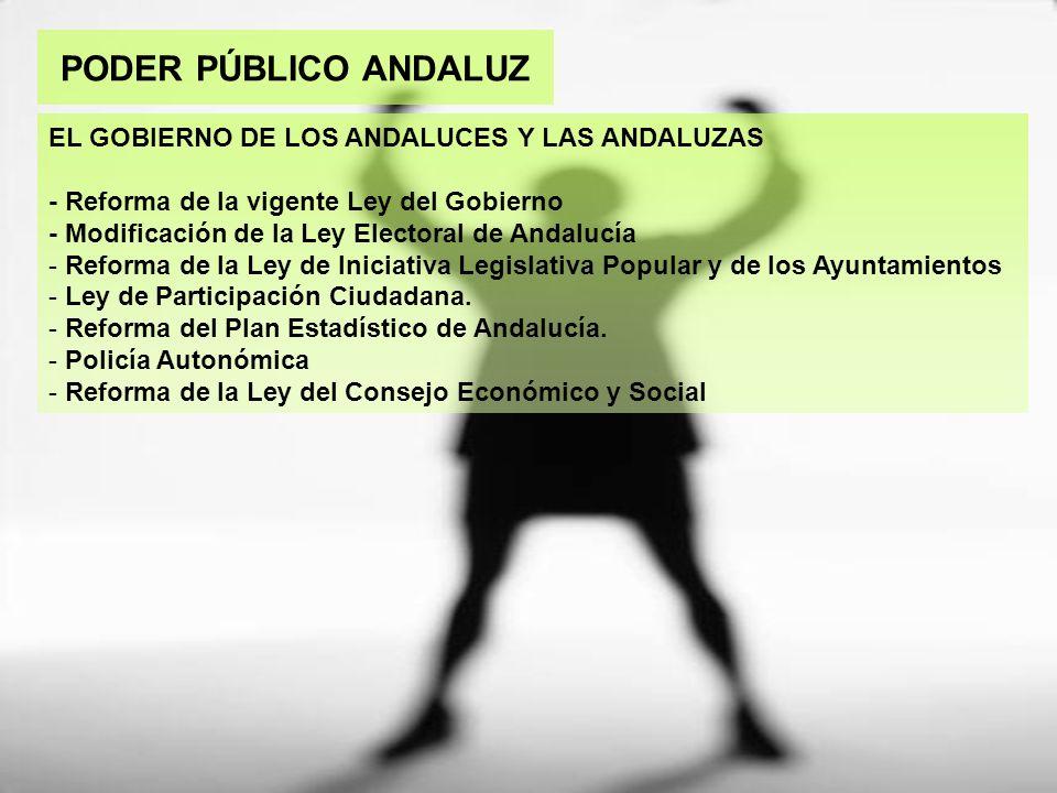 PODER PÚBLICO ANDALUZ EL GOBIERNO DE LOS ANDALUCES Y LAS ANDALUZAS