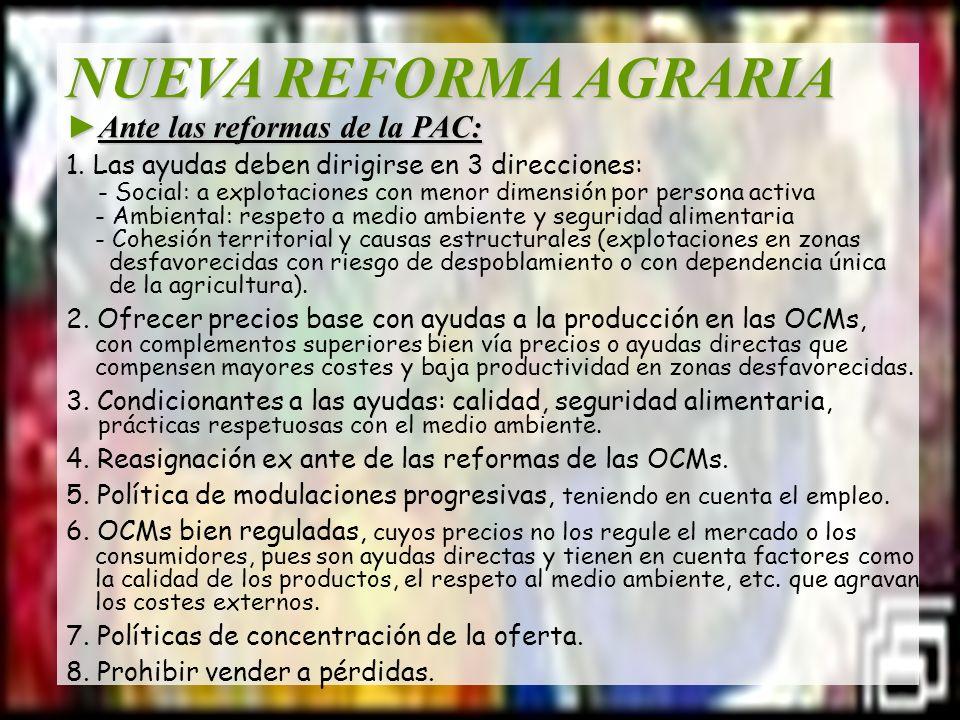 NUEVA REFORMA AGRARIA ►Ante las reformas de la PAC: