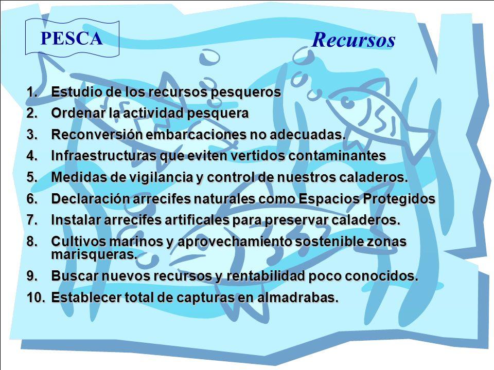Recursos PESCA Estudio de los recursos pesqueros
