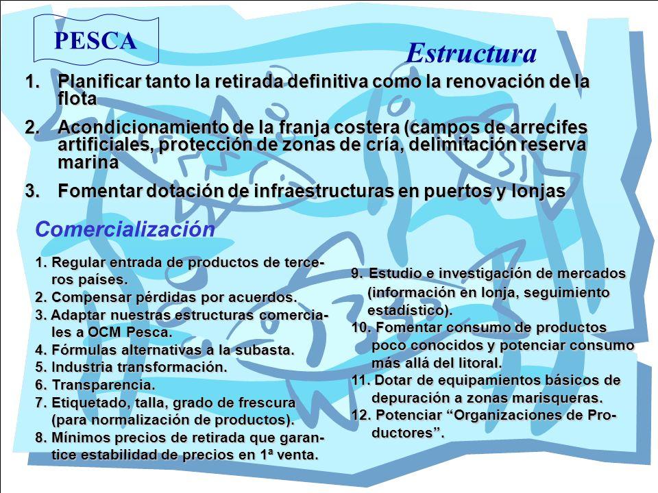 Estructura PESCA Comercialización