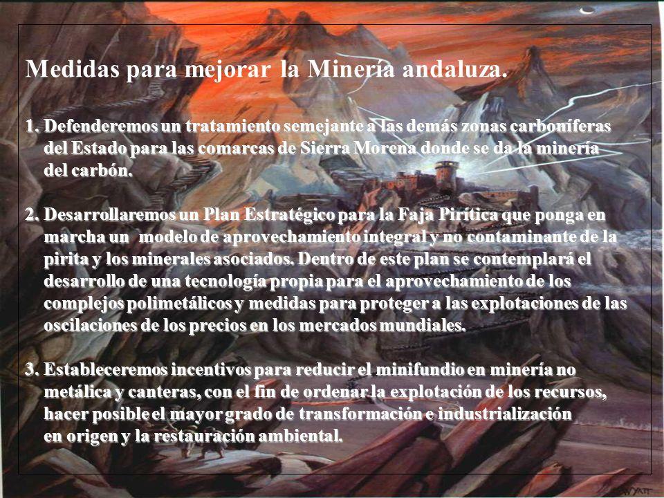 Medidas para mejorar la Minería andaluza.