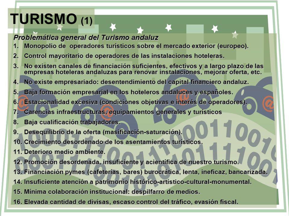TURISMO (1) Problemática general del Turismo andaluz