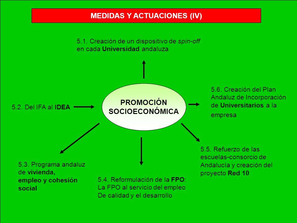 MEDIDAS Y ACTUACIONES (IV)
