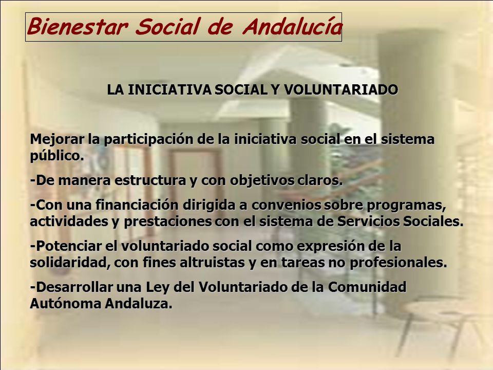 Bienestar Social de Andalucía LA INICIATIVA SOCIAL Y VOLUNTARIADO