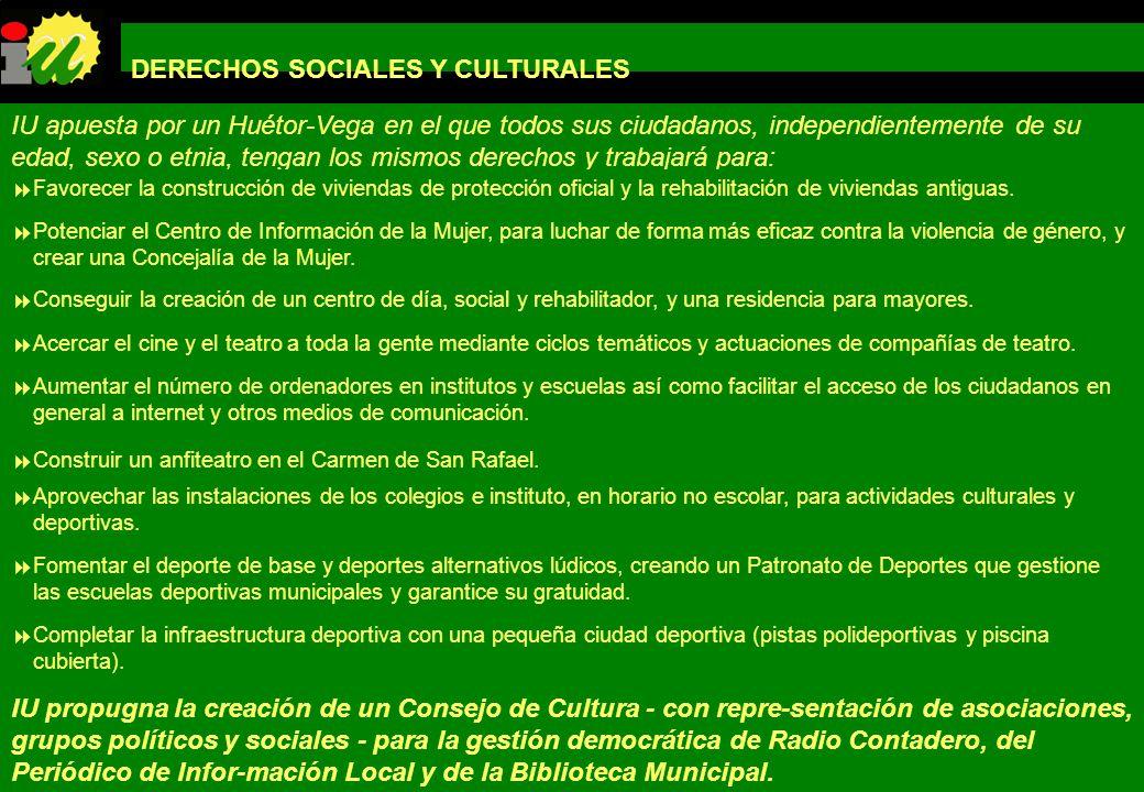 DERECHOS SOCIALES Y CULTURALES