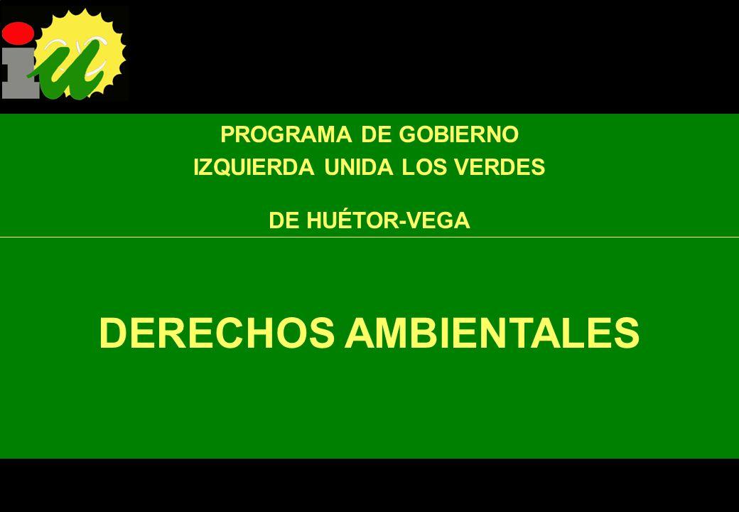 PROGRAMA DE GOBIERNO IZQUIERDA UNIDA LOS VERDES DE HUÉTOR-VEGA