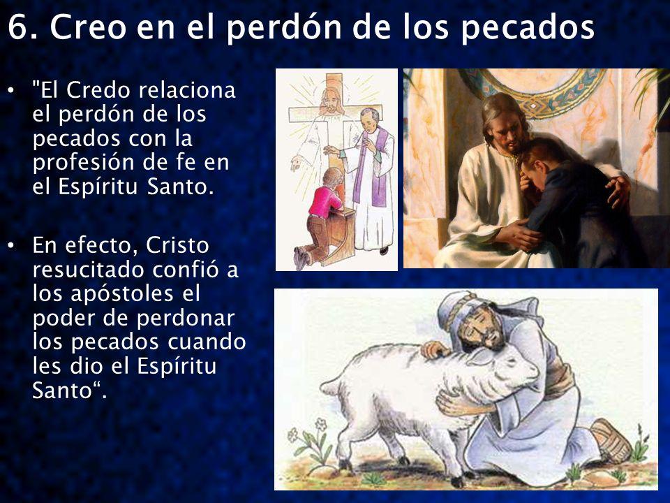6. Creo en el perdón de los pecados