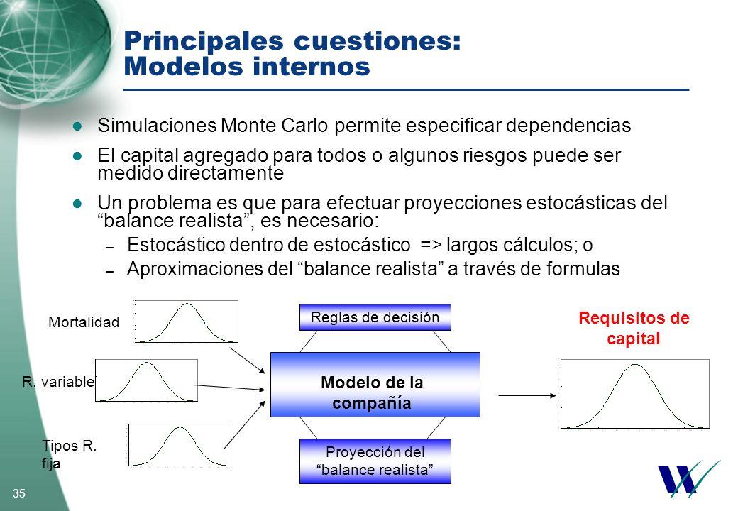 Principales cuestiones: Modelos internos