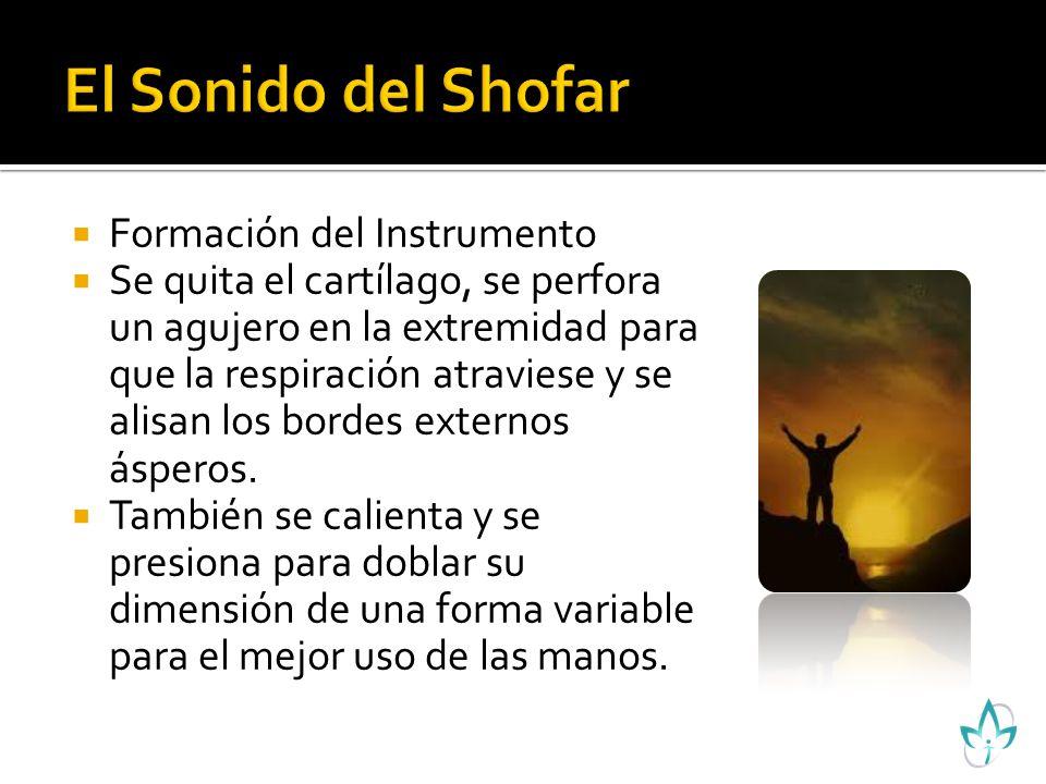 Download Free Sonidos Shofar Descargar